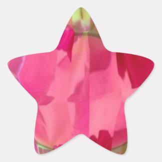 Cristal del diamante: Pétalos de RedRose PinkRose Pegatinas Forma De Estrellaes Personalizadas