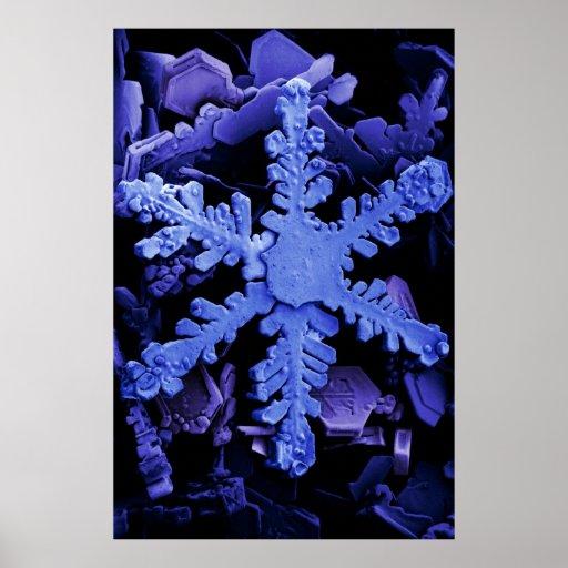 Cristales de la nieve póster