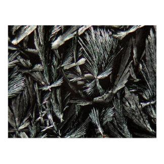 Cristales de la nistatina debajo de un microscopio postal