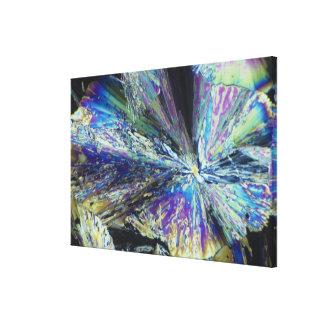 Cristales del ácido cítrico en luz polarizada impresion de lienzo