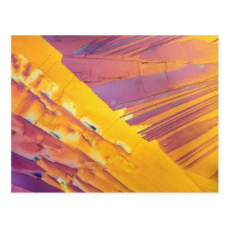 Cristales del ácido oxálico tarjetas postales