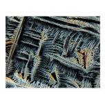 Cristales dendríticos debajo del microscopio postales