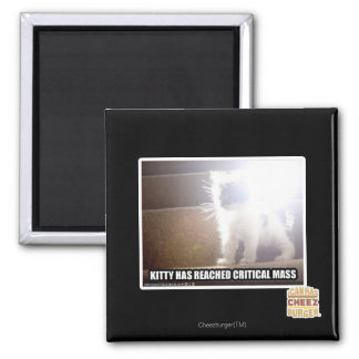 Critical Mass Kitty 2 Inch Square Magnet