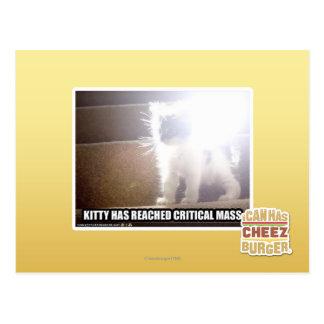 Critical Mass Kitty Postcard