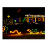 Critter Lights - Shore Acres State Park Oregon Postcards