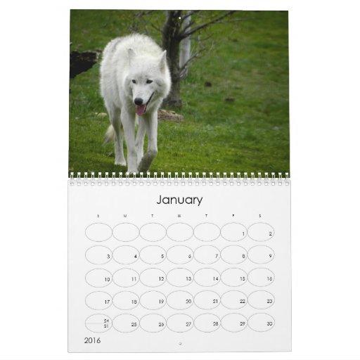 Critters 2011: Fotografía animal Calendarios