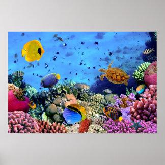 Critters coloridos del arrecife de coral impresiones