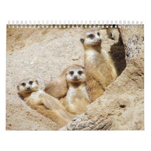 Critters y tales calendarios