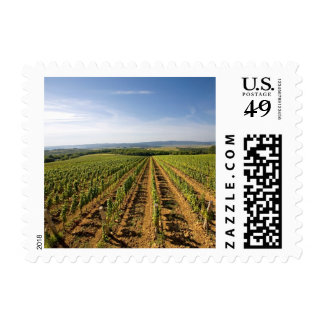 Croatia - Vineyard Postage Stamps