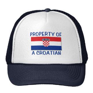 Croatian Property Trucker Hat