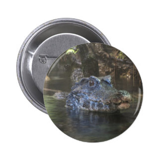 Croc Buttons