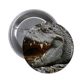 Croc Pins