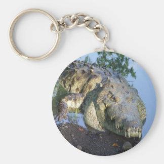 croc basic round button keychain