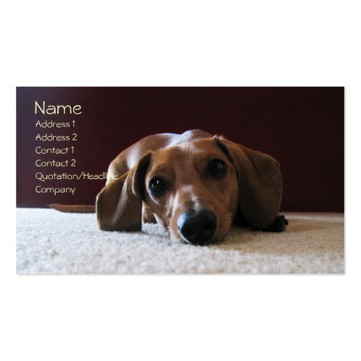 crockettsperfectpic, Name, Address 1, Address 2... Business Cards