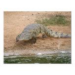 Crocodile 4.25x5.5 Paper Invitation Card