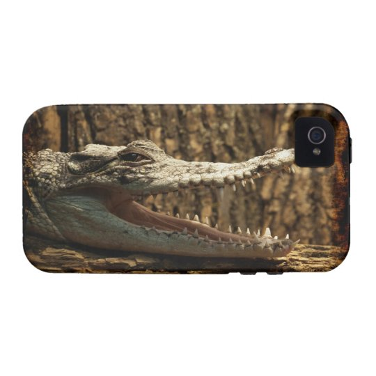 Crocodile Alligator Reptile iPhone Case