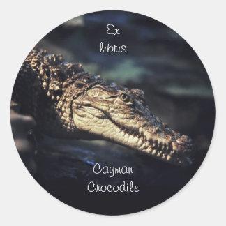 Crocodile bookplate sticker
