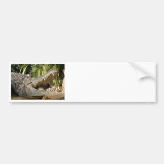 crocodile car bumper sticker