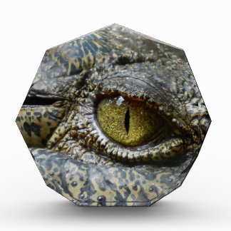 crocodile eye face animal custom personalize diy acrylic award