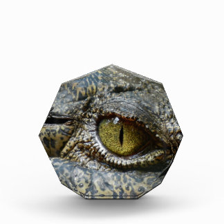 crocodile eye face animal custom personalize diy award