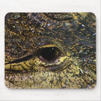 Crocodile Eye Mouse Pad