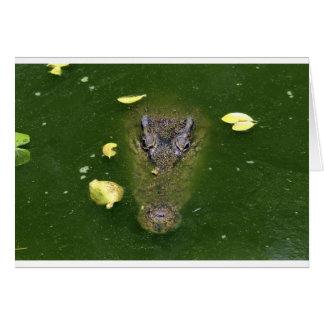 Crocodile green swamp card