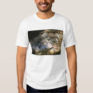 crocodile head photo tee shirt