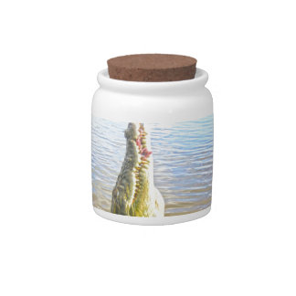 Crocodile_Munchies,_ Candy Jars