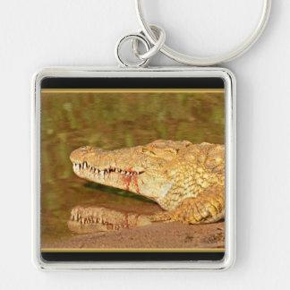 Crocodile Nile Kruger Park Africa Keychain