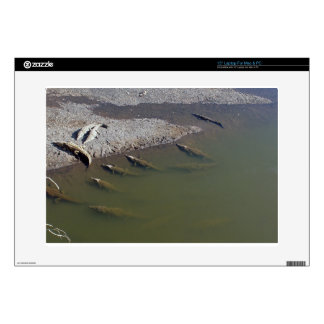 """crocodile river decal for 15"""" laptop"""