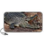 Crocodile Rock iPod Speaker