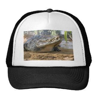 crocodile trucker hat