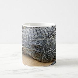 Crocodiles Magic Mug