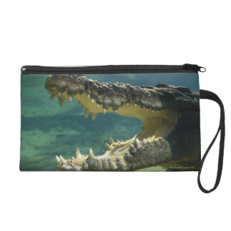 Crocodiles open mouth wristlet clutches