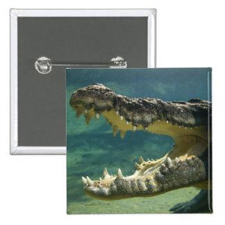 Crocodiles open mouth button