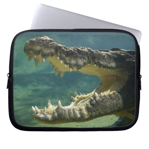 Crocodiles open mouth computer sleeves