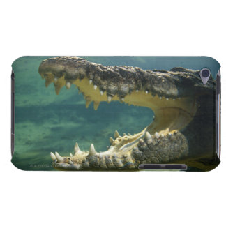 Crocodiles open mouth iPod touch case