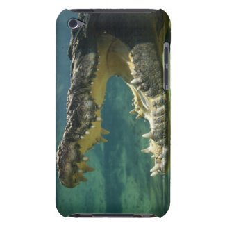 Crocodiles open mouth iPod touch cover