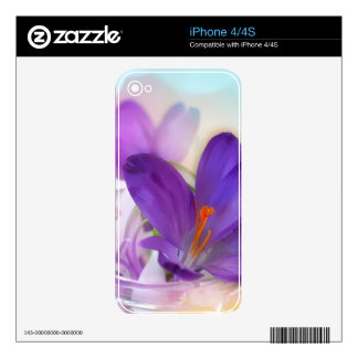 Crocus and Lily of the Valley Floral Arrangement . Decals For iPhone 4S
