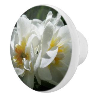 Crocus Ceramic Knob