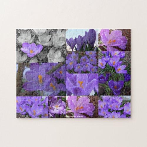 Crocus Collage-Puzzle puzzle