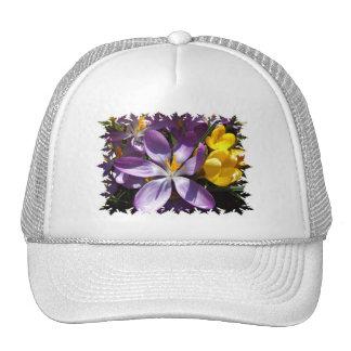 Crocus Colors Baseball Cap Mesh Hat