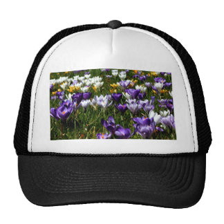 Crocus Flower Trucker Hat