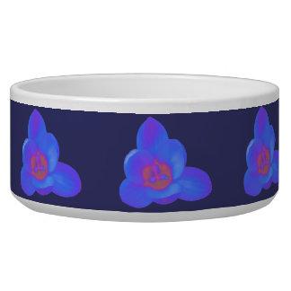 Crocus Flower Hot and Cold Dog Bowl