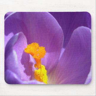 Crocus Flower Mousepad Purple / Blue Decor Gifts
