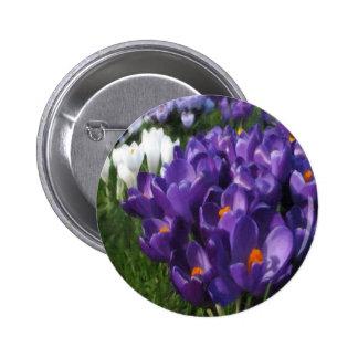 Crocus Flowers Painterly Button