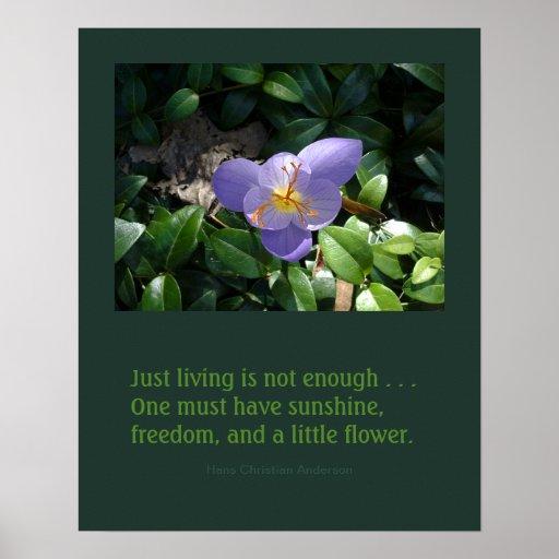 Crocus garden inspirational poster