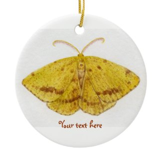 Crocus Geometer Moth Ornament ornament