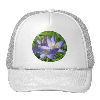 Crocus Mesh Hats
