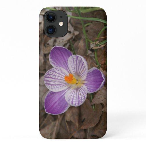 Crocus, iPhone Case. iPhone 11 Case
